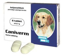 Caniverm forte tbl 6x0,7g